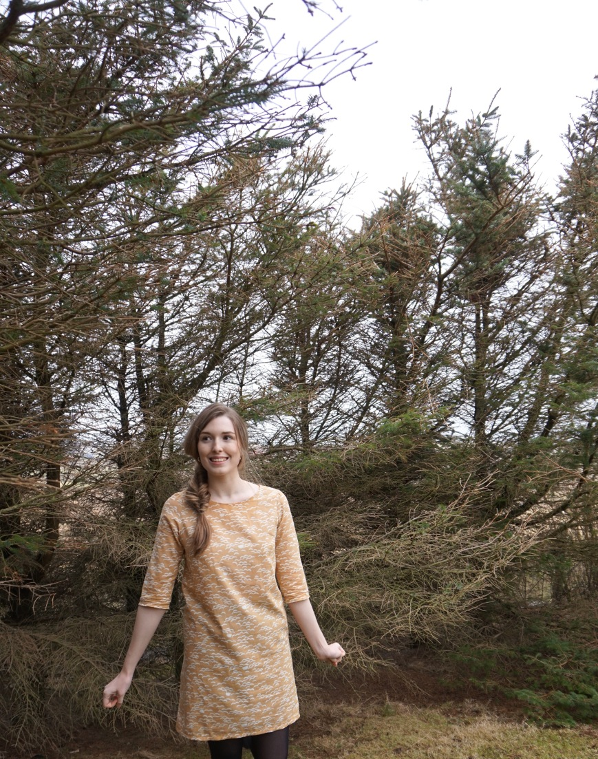 Ultimate Shift Dress Atelier Brunette Fabric (attieanddora.com) Sewing Shetland